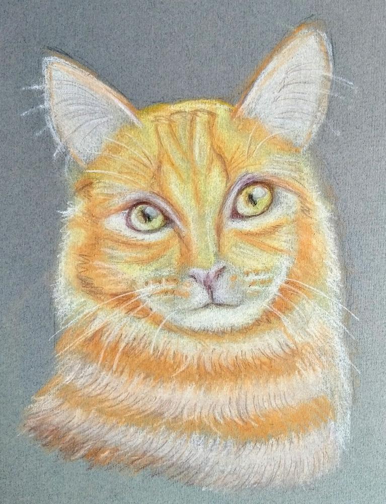 Garfield by paulb